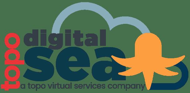 digital sea digital marketing services logo retina