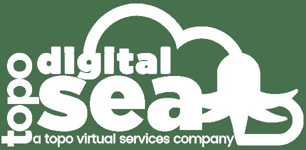 digital sea digital marketing services logo retina white