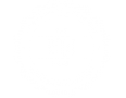 The-Root